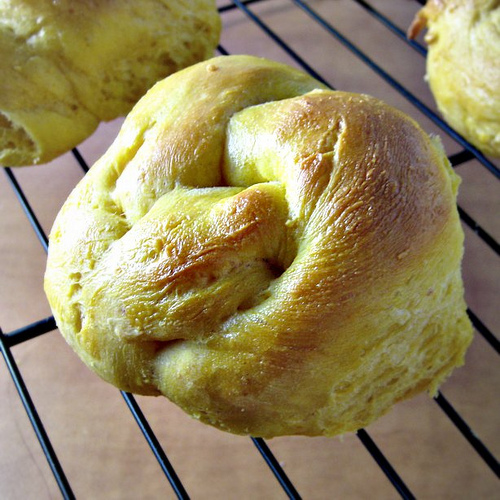 savory pumpkin knot rolls