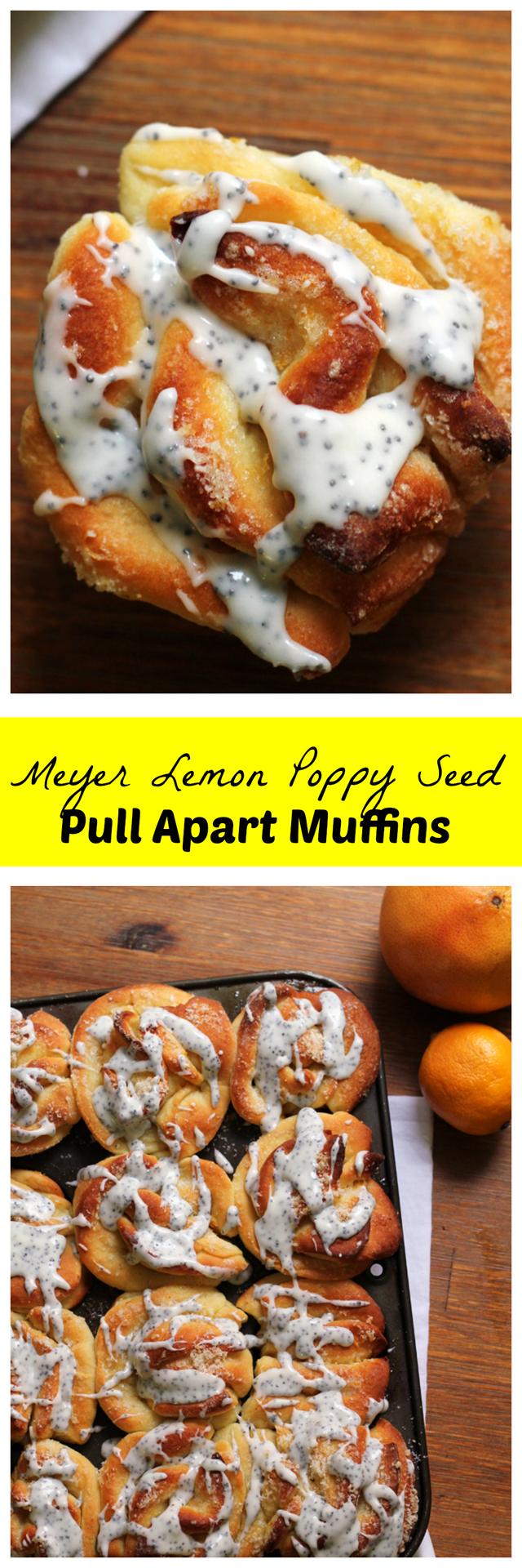 meyer lemon poppy seed pull apart muffins